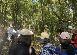 Trung tâm Giáo dục môi trường &DVMT Hoàng Liên tổ chức chương trình  Học tập trải nghiệm thiên nhiên Vườn Quốc gia Hoàng Liên