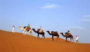 Việt Nam cần quan tâm tới loại hình du lịch mới - Du lịch môi trường